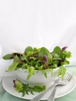 Vege/Raw food