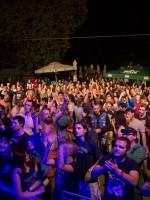 RockLive Festival 7