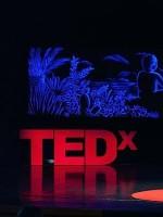 TEDxKriževci: INNOVATE.INCLUDE.INSPIRE