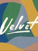 Velvet festival 2018.