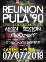 Reunion Pula '90 (humanitarni koncert)