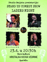 Sisak Ladies night stand up show (Hr, Slo, BiH)