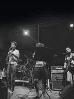 (ne)normalni BALAŠEVIĆ/ Tribute Live 13.02.2020.@Metropolis Club