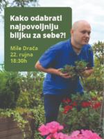 BILJKE U OSOBNOM PROSTORU - kako odabrati najpovoljniju biljku za sebe